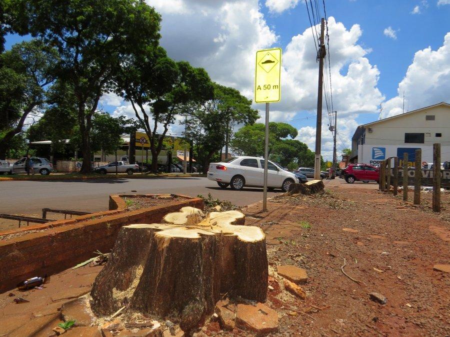 Marechal Rondon pode ganhar plano de arborização - O Presente